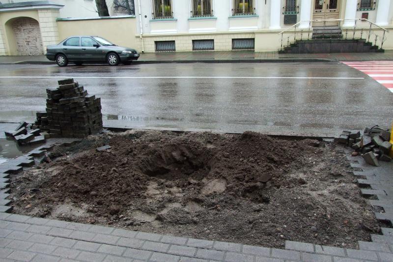 Senosios Liepų gatvės liepos jau pradėtos keisti naujomis