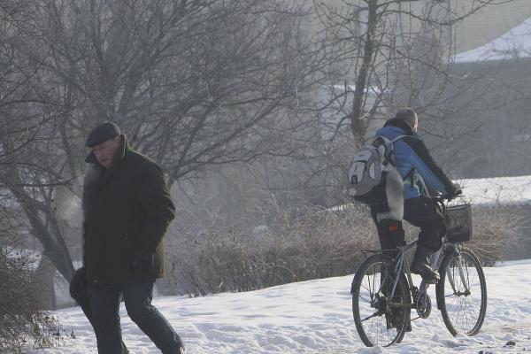 Ar kauniečiams šaltis nebaisus?