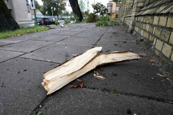 Siaučiantis stiprus vėjas laužė medžius, užverstas vienas automobilis