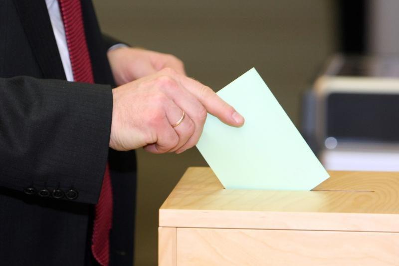Pergalės Seimo rinkimuose politikos naujokėms nežada