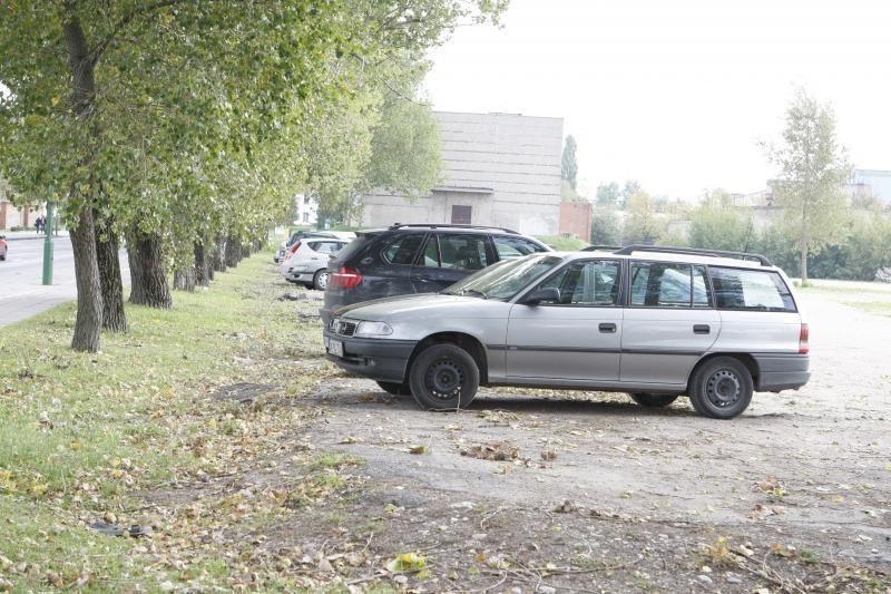 Aplinkosaugininkai Klaipėdoje nori sumažinti mašinų stovėjimo vietų