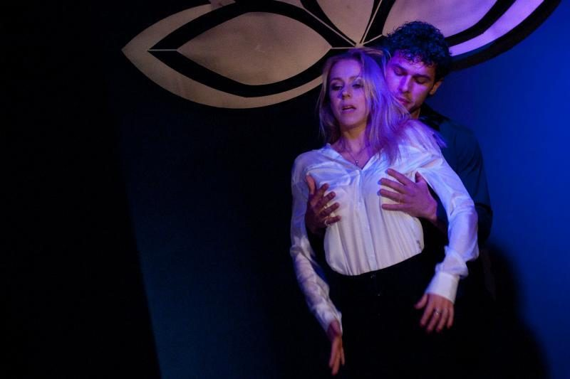 Erotinio bestselerio pristatyme - įžymybių seksualumo proveržis