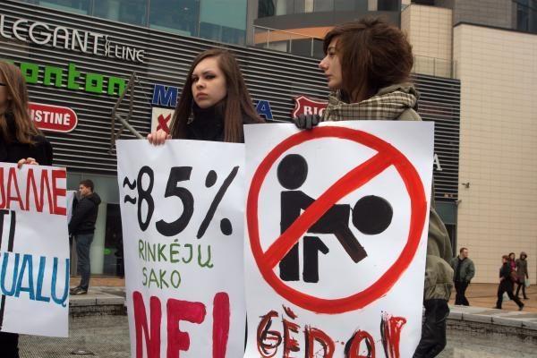 Žmogaus teisių situacijos ES stebėtojai: Lietuvai kenkia homofobiškos iniciatyvos