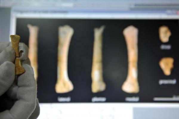 Filipinuose apsigyventa 47 tūkstančiais metų seniau nei manyta
