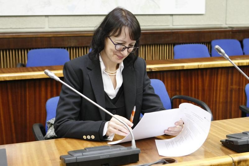 Į Konstitucijos egzamino antrąjį etapą Klaipėdoje pateko studentė
