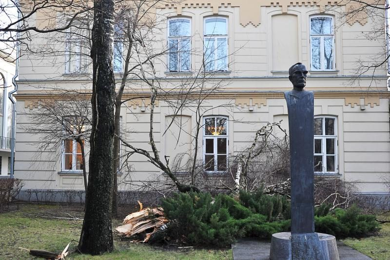 Vėtra Kaune vertė medžius, gyventojus paliko be elektros