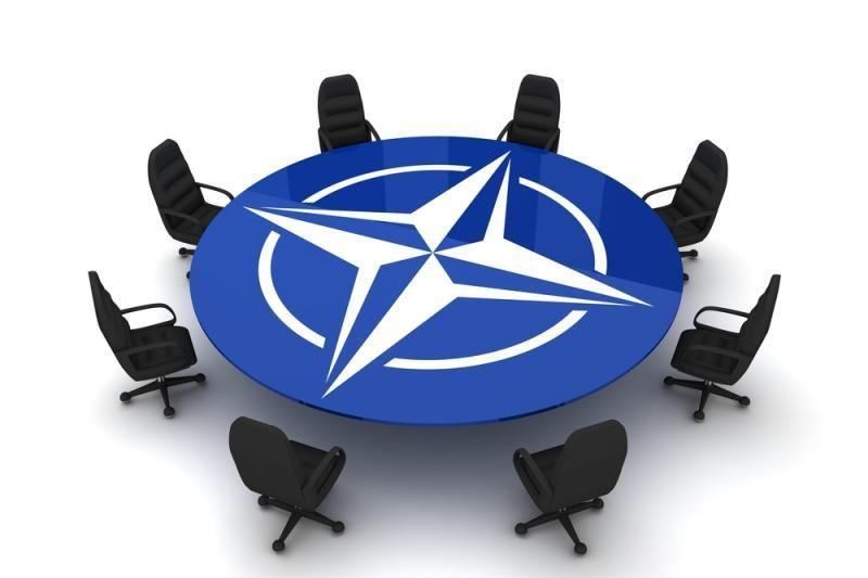 """Baltijos ir Šiaurės šalys atmeta """"mini NATO"""" terminą"""