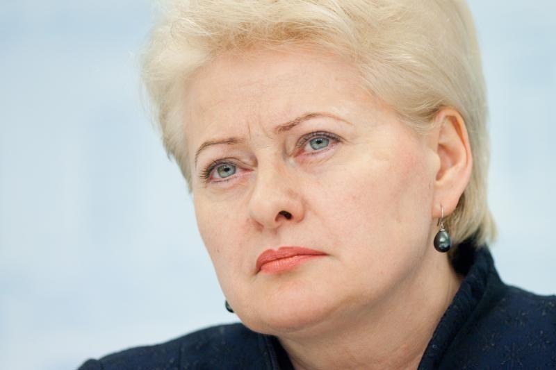 D.Grybauskaitė: dėl įvykių Garliavoje kaltos abi pusės