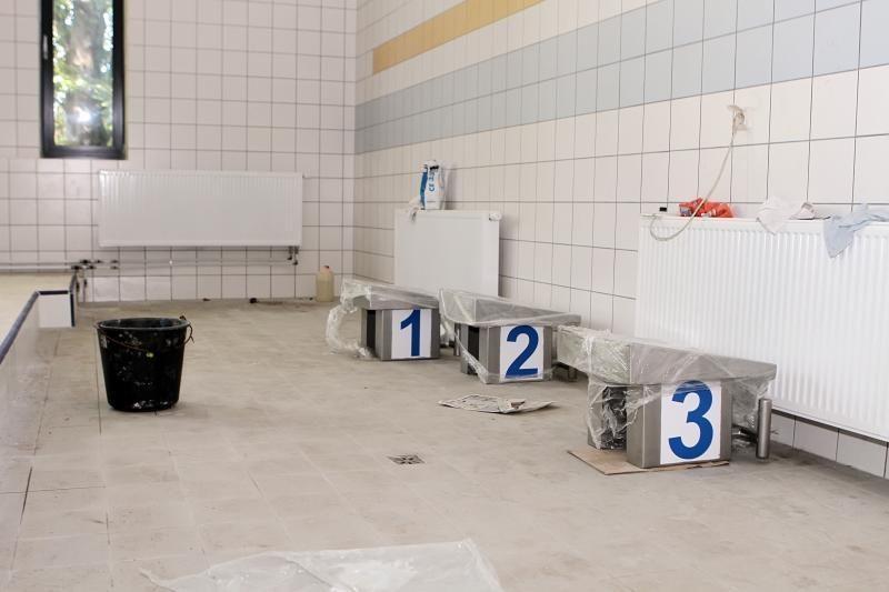 "Klaipėdos politikai ""Gintaro"" baseine ieškojo vandens"