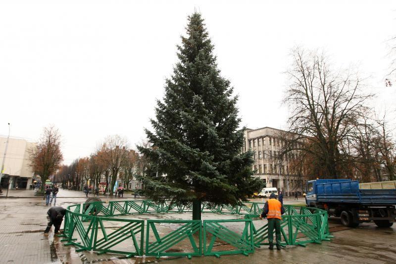 Dėl kalėdinių eglių Romainiuose ir Aleksote teko atjungti elektrą