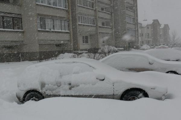 Pūgos šėlsmas Kaune