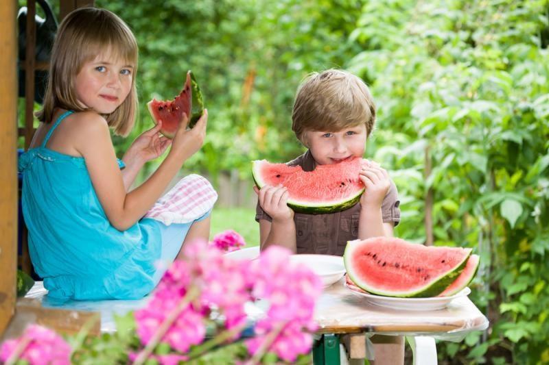 Savaitgalis Lietuvoje bus karštas, trankysis perkūnija