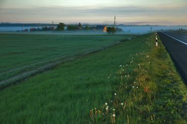 Per avariją Jurbarko rajone žuvo jaunas vyras