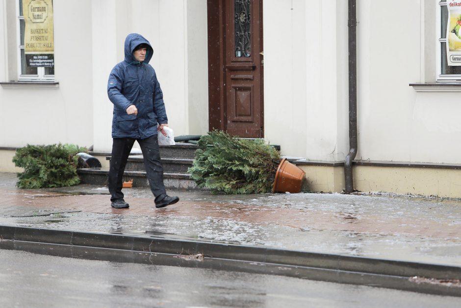 Naktį Klaipėdoje vėjas blaškė šiukšlių konteinerius, sudaužė stotelės stiklus