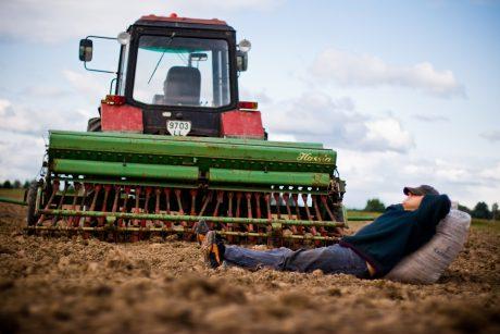 Ūkininkai: tokio pavasario nematėme 25 metus