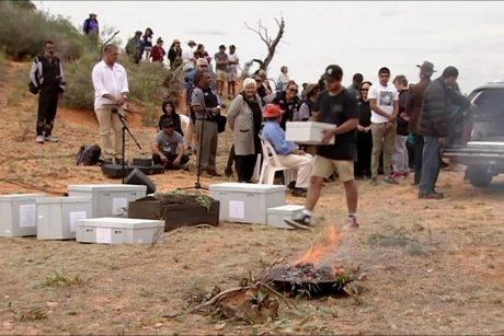 Ankstyviausio Australijos gyventojo palaikai grąžinti į dykumą