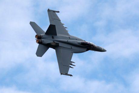 Rastos sudužusio šveicarų karinio lėktuvo liekanos, piloto tebeieškoma