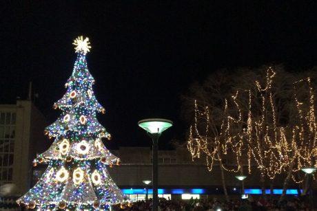 Palanga įžiebė miesto eglę ir suspindotūkstančiais šventinių lempučių