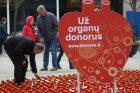 Žvakučių akcija organų donorams pagerbti