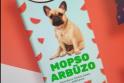"""Internautai ūžia: kodėl ant """"Mopso arbūzo"""" šokolado pavaizduotas prancūzų buldogas?"""