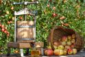 Sodininkai: obelys pavargusios, trumpai žydėjusios, sodai – be obuolių