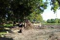 Tinklai: Bangų gatvės gyventojų dėmesį patraukė iškasto grunto krūvos prie Jono kalnelio – paaiškėjo, kad čia klojami nauji lietaus nuotekų vamzdynai.