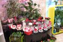 Įžūlumas: Kaune vidury dienos jaunuoliai pagrobė 80 rožių