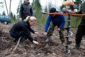 Tūkstantmečio ąžuolyne pasodinta dar 5 tūkst. ąžuolų