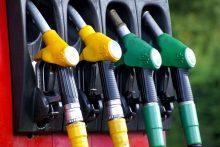 Vyriausybė nusprendė labiau skatinti antros kartos biodegalus