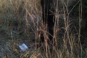 Tarp kontrabandininkų Vilkaviškyje – nepilnametis