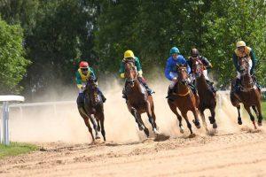 Žirgų lenktynėse - kvapą gniaužiančios pergalės finišo tiesiojoje