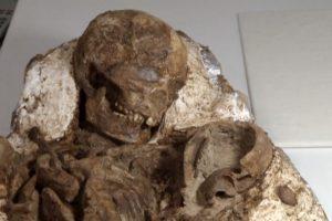 Taivane iškasta 4800 metų fosilija pribloškė net archeologus