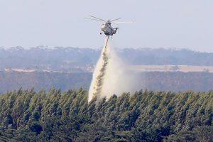 Australijoje per gaisrus sudegė dešimtys namų, žuvo daug gyvulių