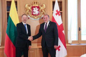 Lietuvos ambasadorius įteikė skiriamuosius raštus Gruzijos prezidentui