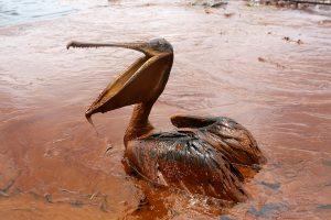 BP sumokės rekordinę 18,7 mlrd. dolerių kompensaciją dėl naftos išsiliejimo