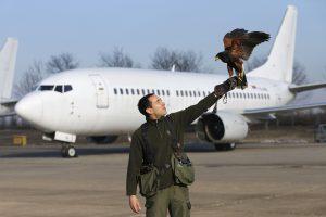 Pavojus dėl Serbijos prezidento lėktuvo kilo pilotui išliejus kavą
