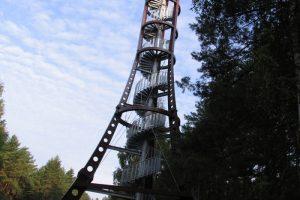 Įkopę į Labanoro regioninio parko apžvalgos bokštą pasijusite kaip paukštis