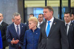 D. Grybauskaitė: geopolitinė realybė reikalauja tvirtos Aljanso vienybės