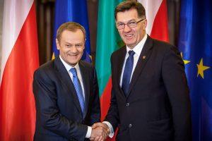 Lietuva ir Lenkija patenkintos NATO reakcija, Varšuva tikisi karinių bazių