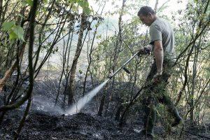 Ugniagesiai per 30 kartų vyko gesinti gaisrų atvirose teritorijose