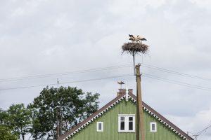 Apklausa: beveik pusė lietuvių niekada nėra keitę gyvenamosios vietos