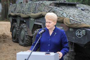 Lietuva į tarptautines operacijas nori siųsti daugiau karių