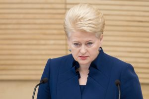 Prezidentė vetavo Viešųjų pirkimų įstatymo pataisas dėl partijų (komentarai)