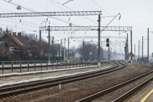 """Lietuvos gamtos fondas pritaria estų peticijai dėl """"Rail Balticos"""""""