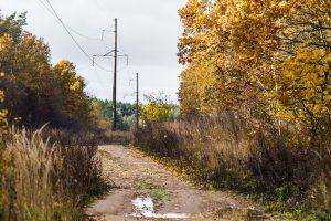 Per metus – 1000 kilometrų papildomai sutvarkytų miško kelių