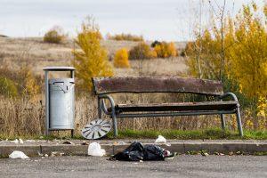 Lietuvoje per šiltąjį sezoną iš pakelių surenkama 2,5 tūkst. tonų šiukšlių