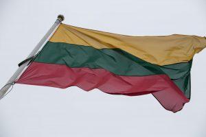 Neblaivūs vyrai bandė nuplėšti valstybės vėliavą