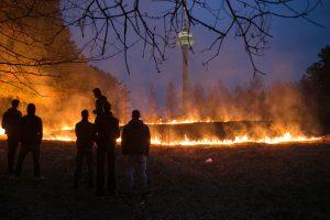 Žolės padegėjų negąsdina nei baudos, nei keliama grėsmė