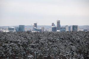 Vilnius norėtų didesnės GPM pyrago dalies