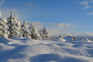 Orai: baltą sniego paveikslą sugadins lietus